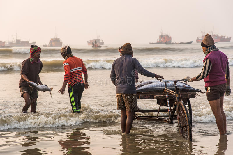 Pescatori che caricano pesce fotografie stock