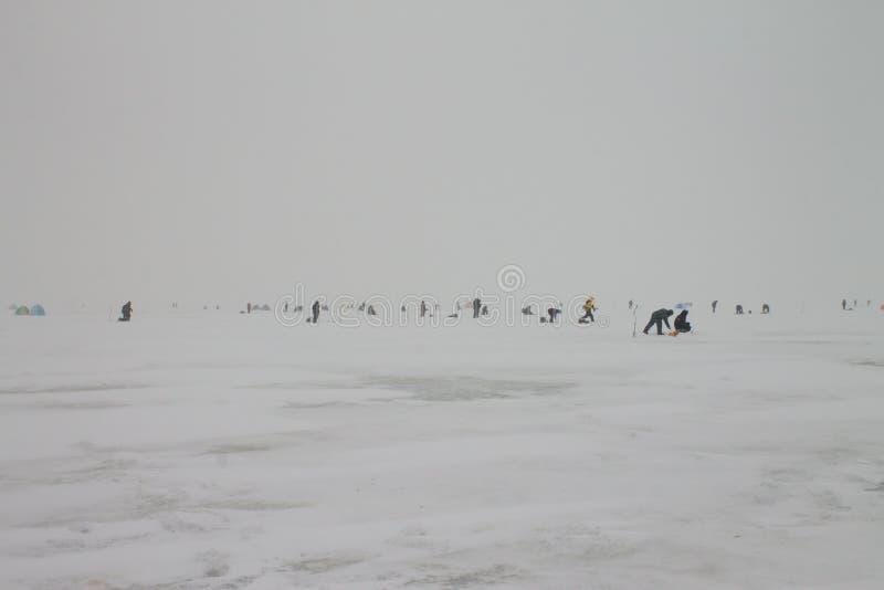 Pescatori che pescano sul ghiaccio del golfo di Finlandia inverno nel 3 febbraio 2019 Russia, St Petersburg fotografia stock