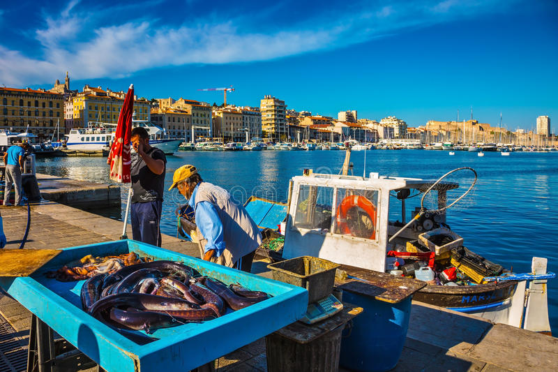 Pescatori e fermo fresco fotografia stock libera da diritti