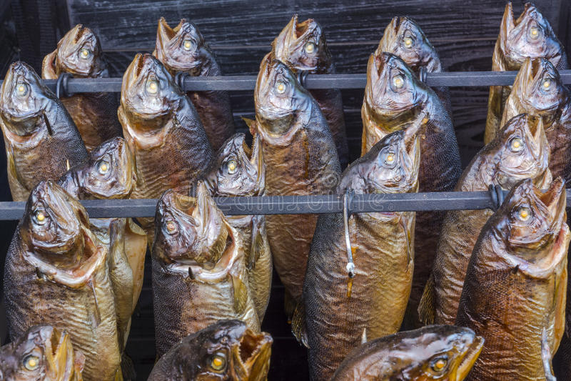 Pesce affumicato fotografie stock libere da diritti