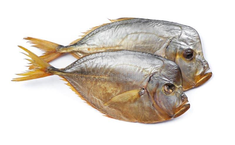 Pesce affumicato del vomer fotografie stock libere da diritti