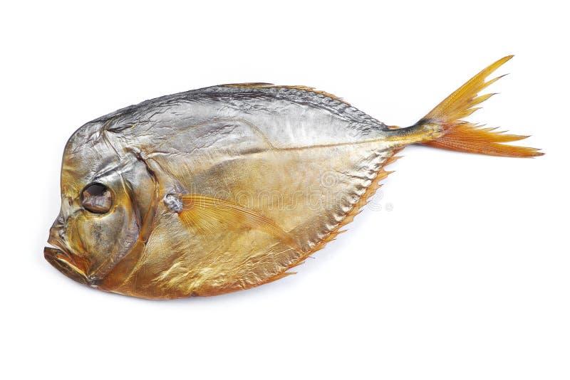 Pesce affumicato del vomer fotografia stock libera da diritti