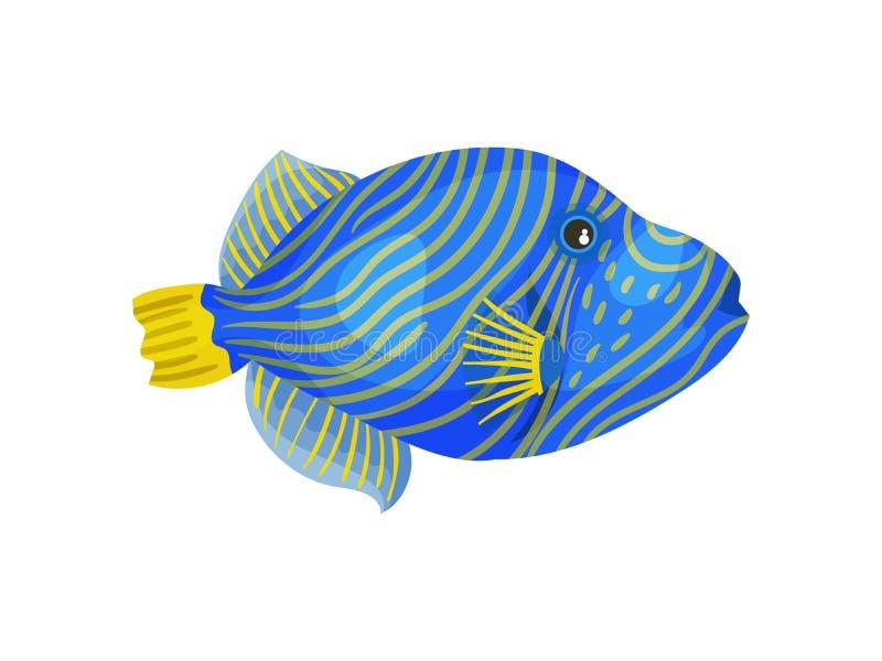 Pesce blu con le bande gialle sottili Illustrazione di vettore su priorit? bassa bianca illustrazione vettoriale