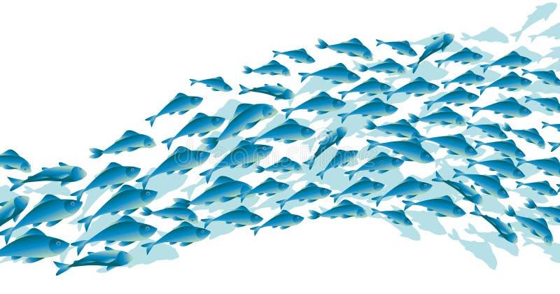 Pesce blu della scuola su fondo bianco royalty illustrazione gratis
