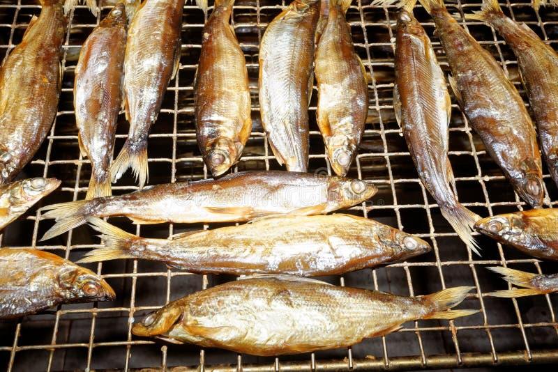 Pesce che elabora, stabilimento di trattamento del pesce fotografie stock libere da diritti