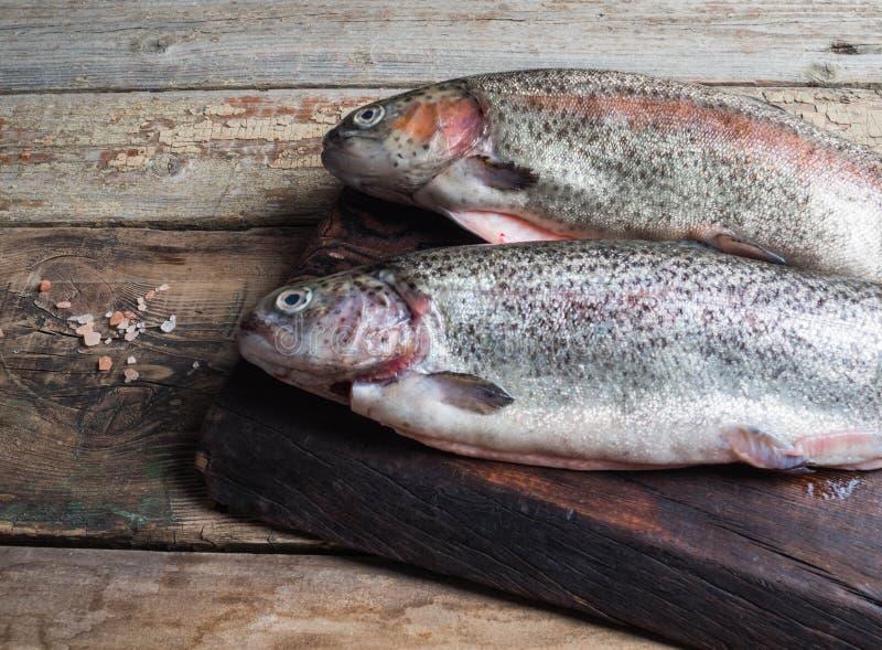 Pesce crudo della trota iridea due fotografia stock libera da diritti