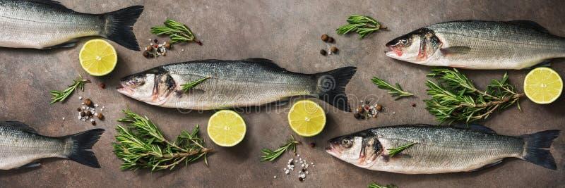 Pesce crudo fresco del branzino con i rosmarini e la calce su un fondo rustico marrone scuro, insegna disposizione piana, vista s fotografia stock