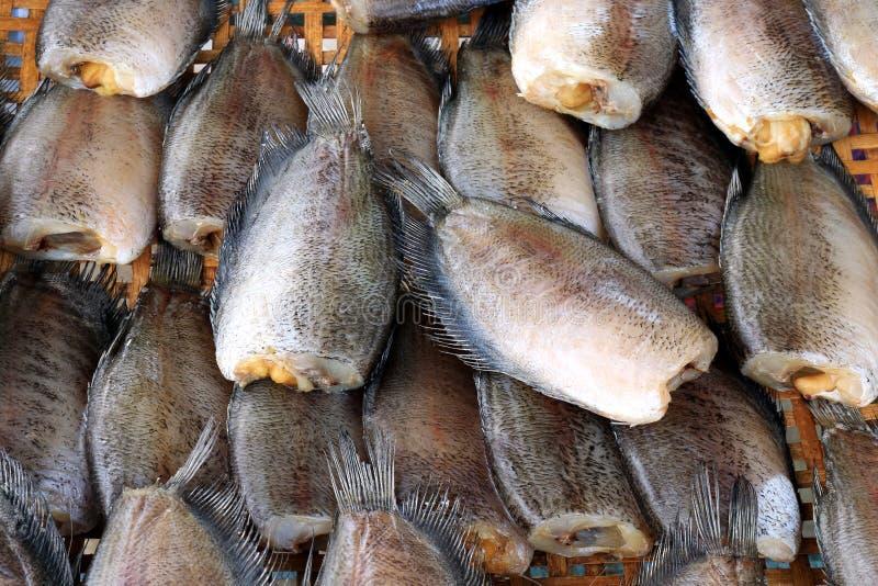 Pesce crudo, pesce salato secco con uova, pesce marinato, salid di gorami nero di gorami nero dello snakeskin di gorami nero dell fotografie stock