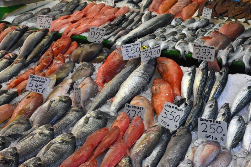 Pesce da vendere, Brixton Market, Londra del sud, Inghilterra immagine stock