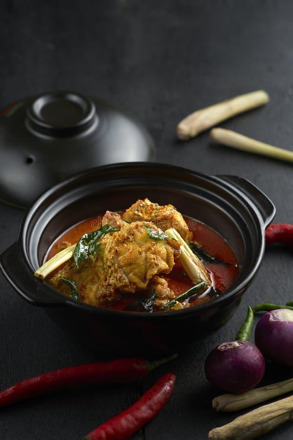 Pesce del curry in Clay Pot fotografia stock libera da diritti