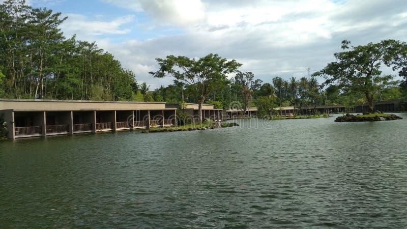 Pesce del lago fotografia stock