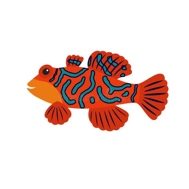 Pesce del mandarino del fumetto illustrazione vettoriale