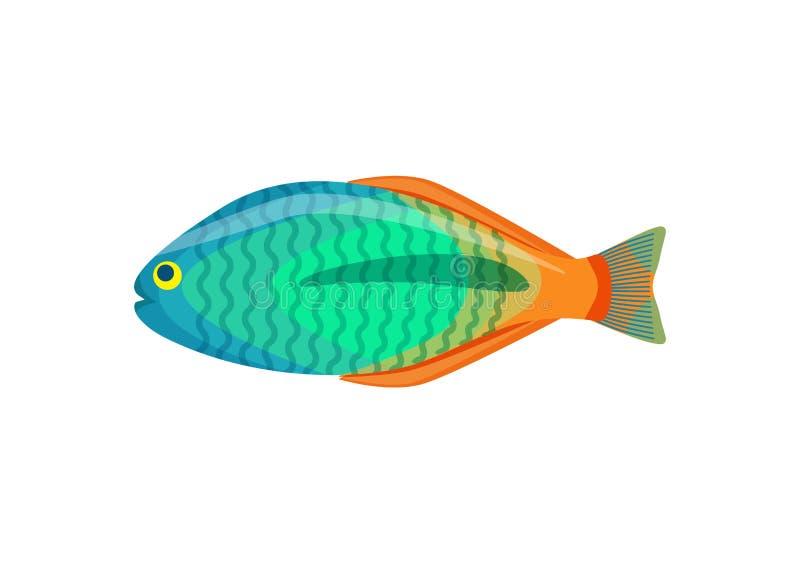 Pesce dell'acquario di Rainbowfish isolato sull'icona bianca royalty illustrazione gratis