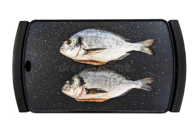 Pesce dell'orata sulla griglia della pietra pronta ad essere cucinato isolato su fondo bianco fotografia stock libera da diritti