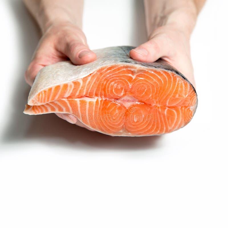 Pesce di color salmone in mani maschii fotografie stock