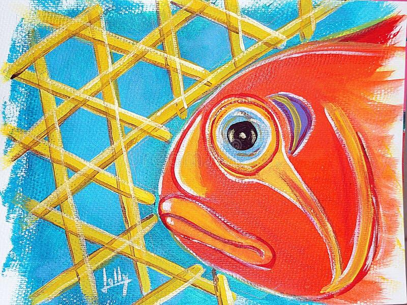Pesce di Cunaro a Mara fotografia stock libera da diritti