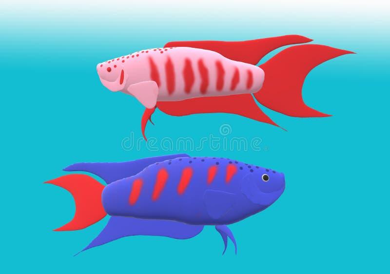 Pesce di gorami nero di paradiso nell'illustrazione 3D fotografia stock
