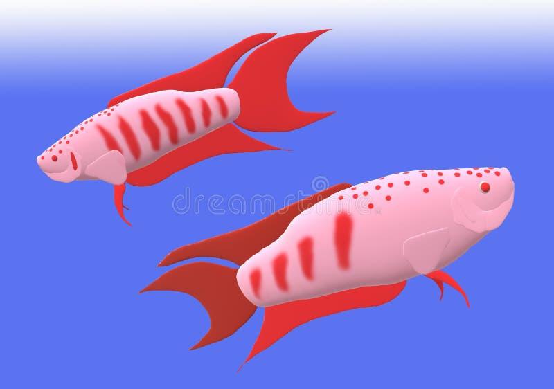 Pesce di gorami nero di paradiso nell'illustrazione 3D fotografia stock libera da diritti