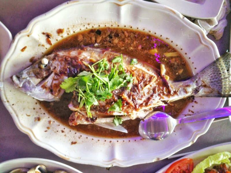 Pesce di Stim fotografie stock
