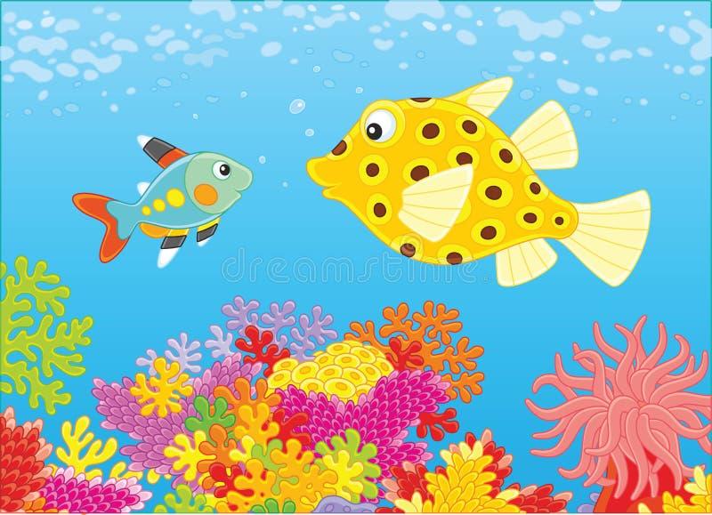 Pesce e ostraciidae dei raggi x illustrazione vettoriale