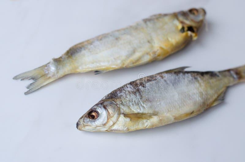 Pesce essiccato sulla tavola Pesce asciutto salato del fiume su una vista superiore del fondo bianco immagini stock libere da diritti