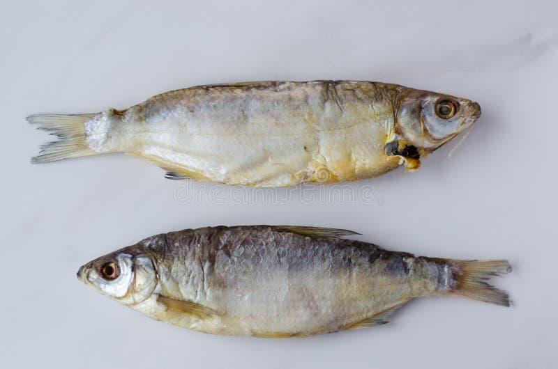 Pesce essiccato sulla tavola Pesce asciutto salato del fiume su una vista superiore del fondo bianco immagine stock