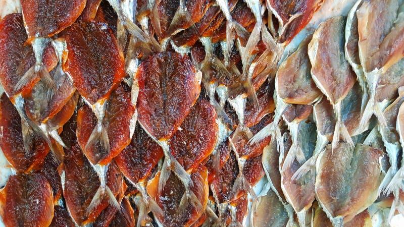 Pesce essiccato in Tailandia immagine stock libera da diritti