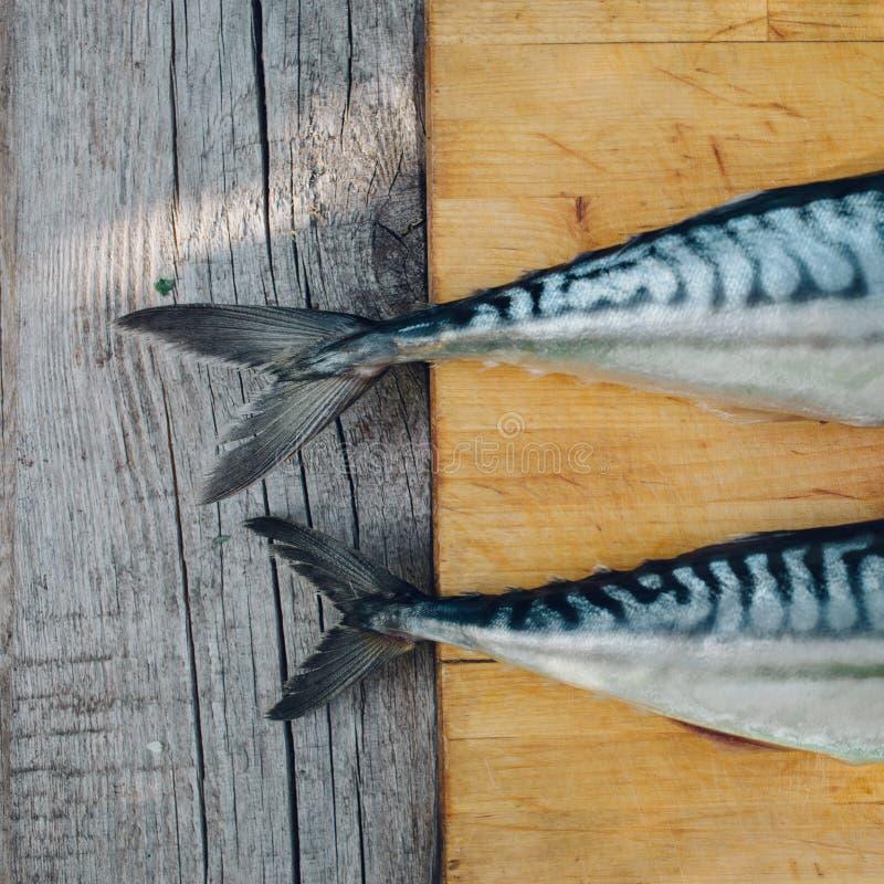 pesce fresco due su un tagliere, cucinante sgombro, code del pesce vicino su immagine stock libera da diritti
