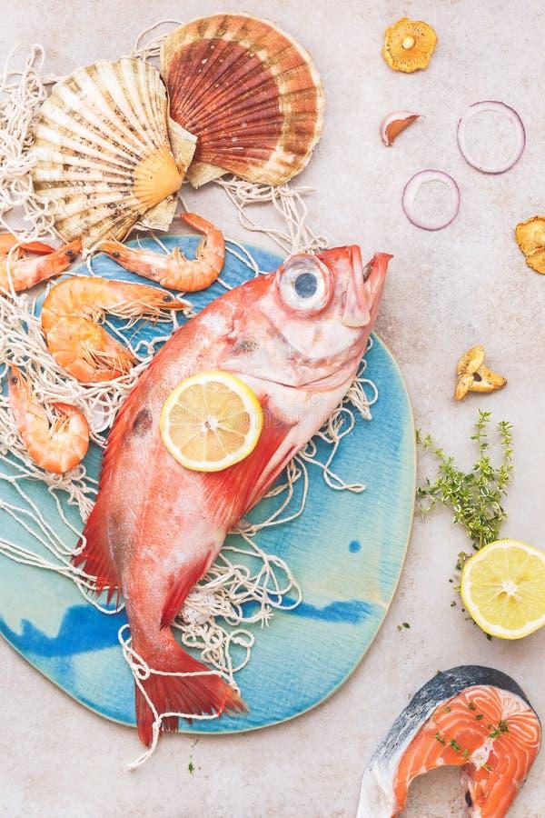 Pesce fresco e frutti di mare su rete da pesca fotografia stock
