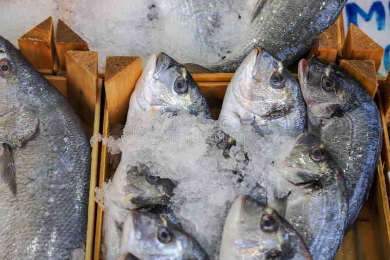 Pesce fresco nel mercato ittico fotografie stock