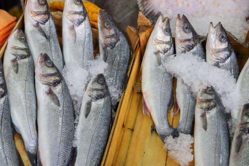 Pesce fresco nel mercato ittico fotografia stock libera da diritti