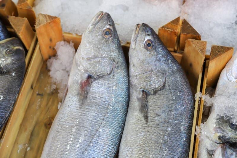 Pesce fresco nel mercato ittico fotografia stock