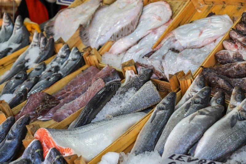 Pesce fresco nel mercato ittico immagini stock libere da diritti