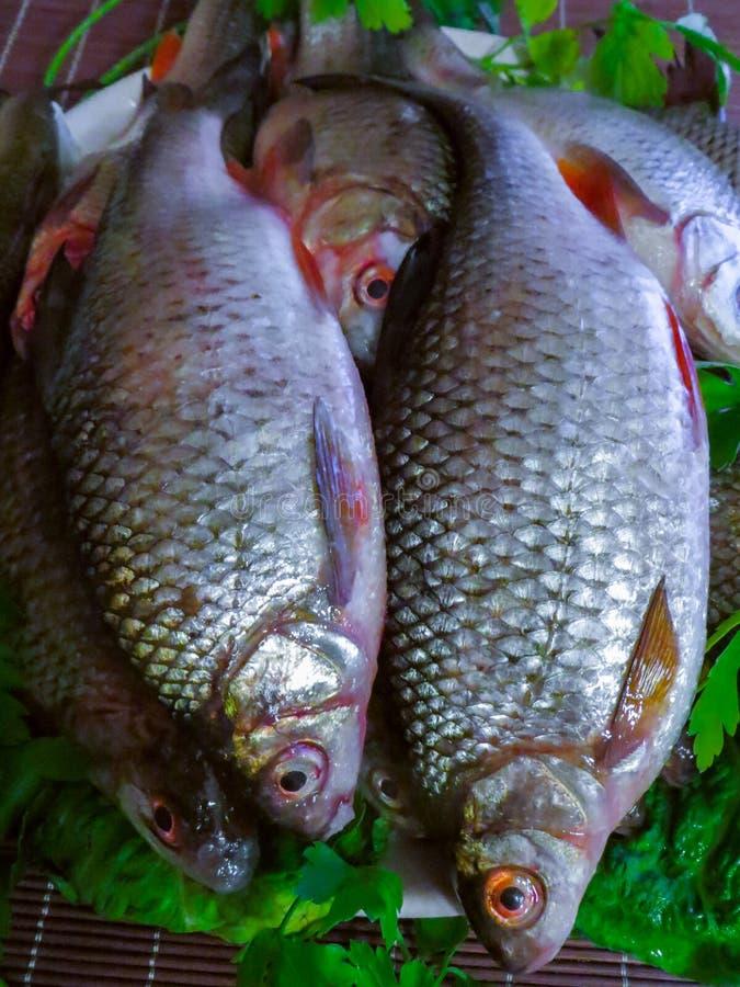 Pesce fresco pescato nel lago su un piatto fotografia stock