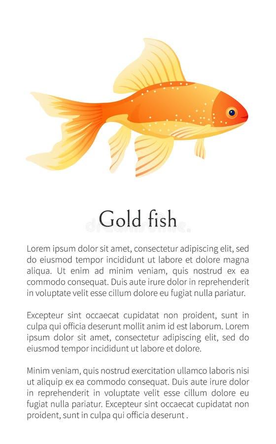 Pesce rosso dell'acquario del pesce rosso isolato su bianco illustrazione vettoriale