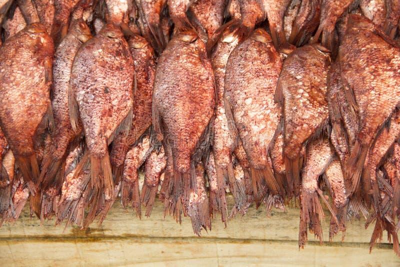 Pesce salato fotografia stock libera da diritti