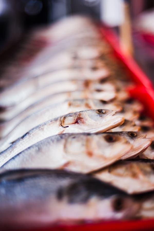 Pesce salato fotografia stock