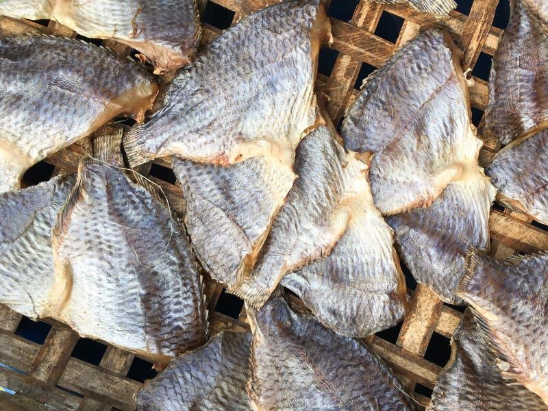 Pesce salato asciutto di tilapia di Nilo fotografia stock