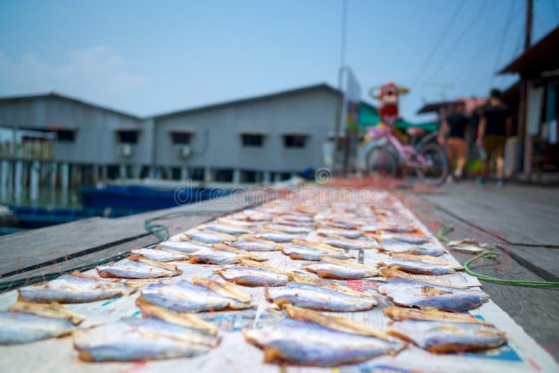 Pesce salato in lavorazione fotografia stock