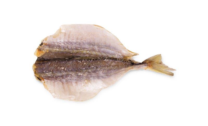 Pesce salato secco fotografia stock libera da diritti