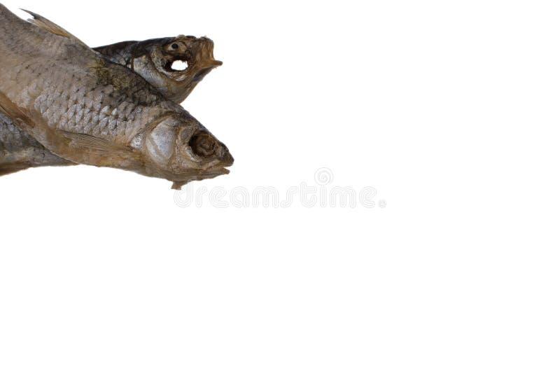 Pesce salato secco del triotto su un fondo bianco isolato fotografia stock