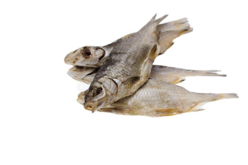 Pesce salato secco del triotto su un fondo bianco isolato immagini stock libere da diritti