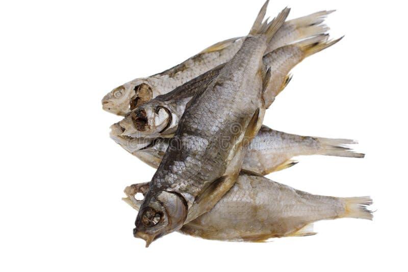 Pesce salato secco del triotto su un fondo bianco isolato immagine stock libera da diritti