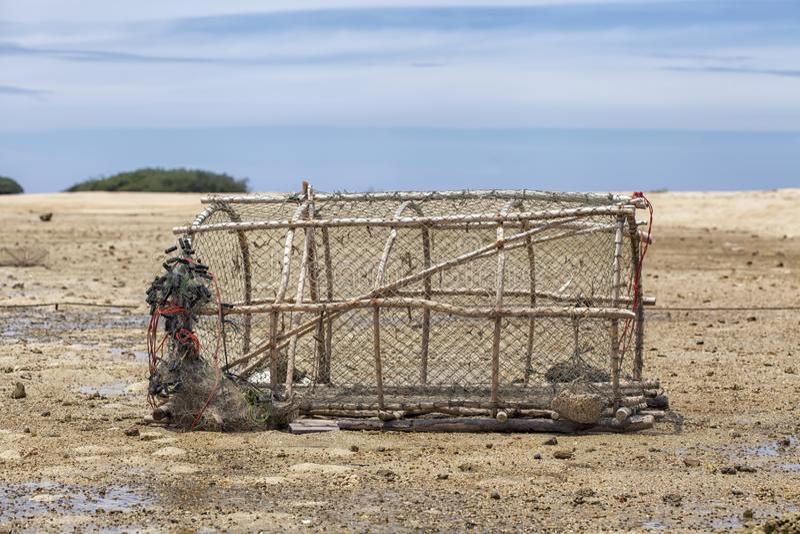 Pesce-trappola di bambù con un collo stretto - industria della pesca tradizionale tailandese t fotografia stock