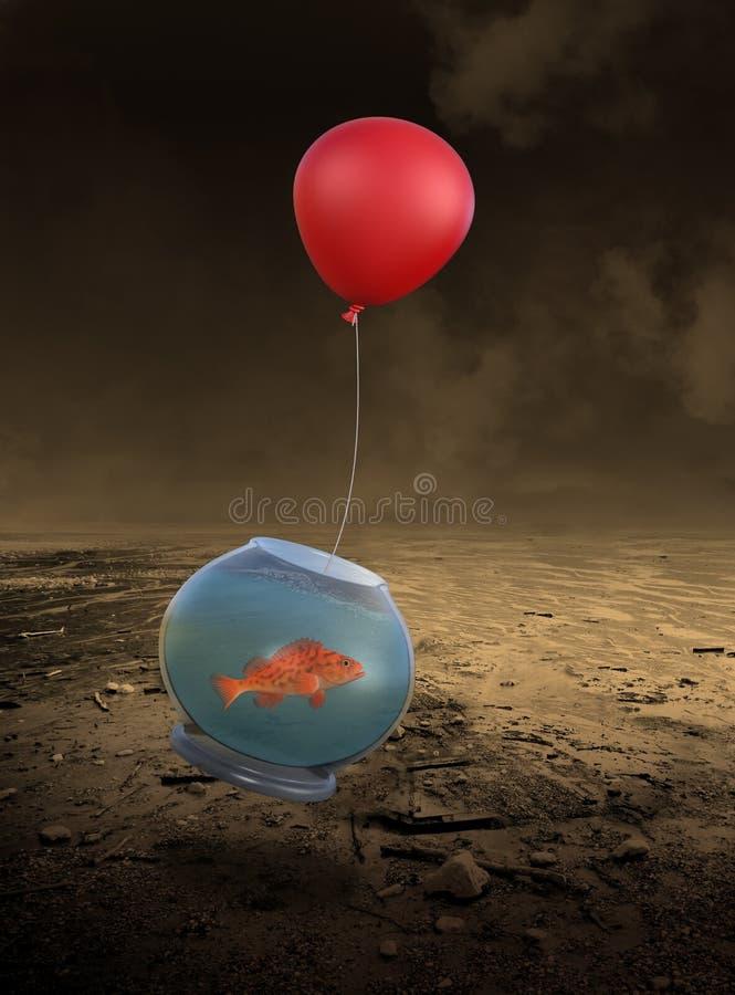 Pesce volante, determinazione, scopi, sfide fotografia stock