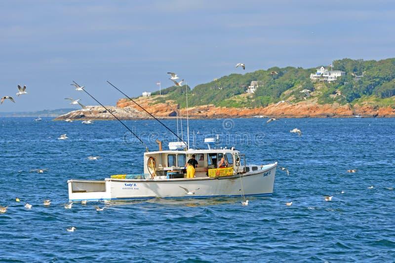 Peschereccio dell'aragosta al porto di Gloucester, Massachusetts fotografia stock