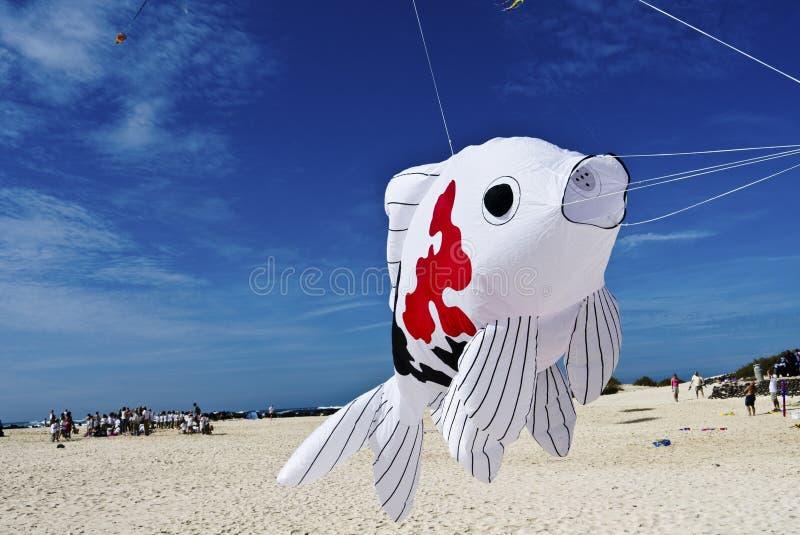 Peschi l'aquilone che decolla per i cieli blu alla spiaggia immagini stock
