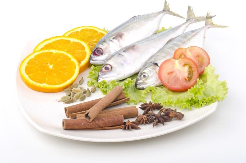 Pesci decorati fotografie stock