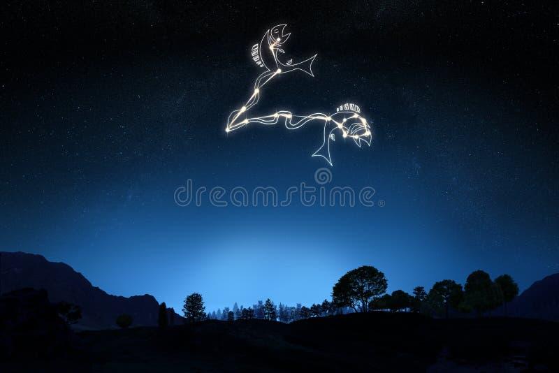 Pesci del segno dello zodiaco fotografie stock libere da diritti