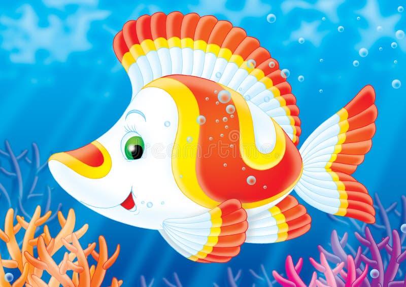 Pesci di una barriera corallina. illustrazione di stock